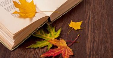 Disfruta más por menos sácale el máximo partido a todos los eventos y espectáculos de este otoño