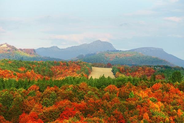 Disfruta más por menos parque natural gorbea naturaleza turismo