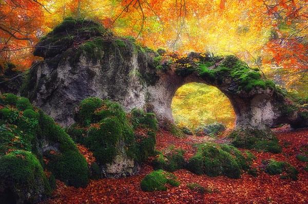 disfruta más por menos parque natural de urbasa y andía maravillas de la naturaleza