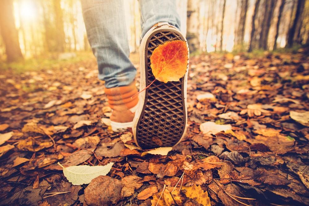 Disfruta más por menos naturaleza otoño tiempo libre turismo natural paisajes otoñales